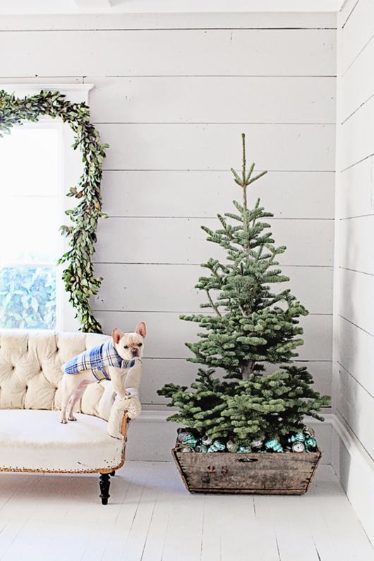 dreamy_whites_christmas20171111-99003-fkhr5z.jpg